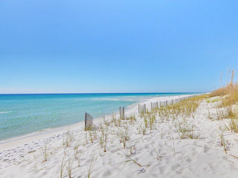 Spring Break on the Gulf Coast