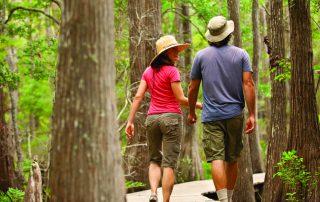 Hiking Trails on 30A