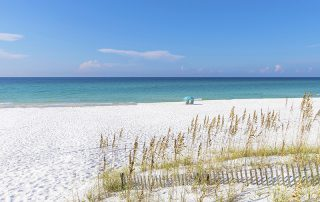 Beach Cleanup Programs in Pensacola