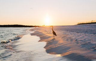 5 Reasons to Visit the Beach in the Fall